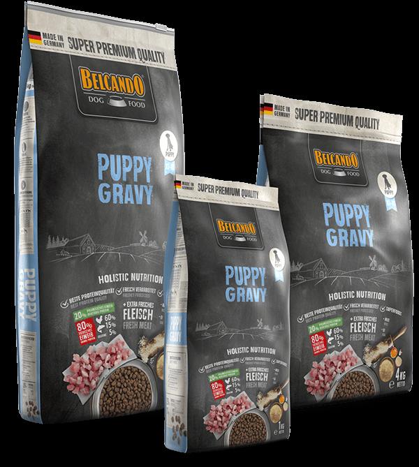 Belcando-Puppy-Gravy-Composing
